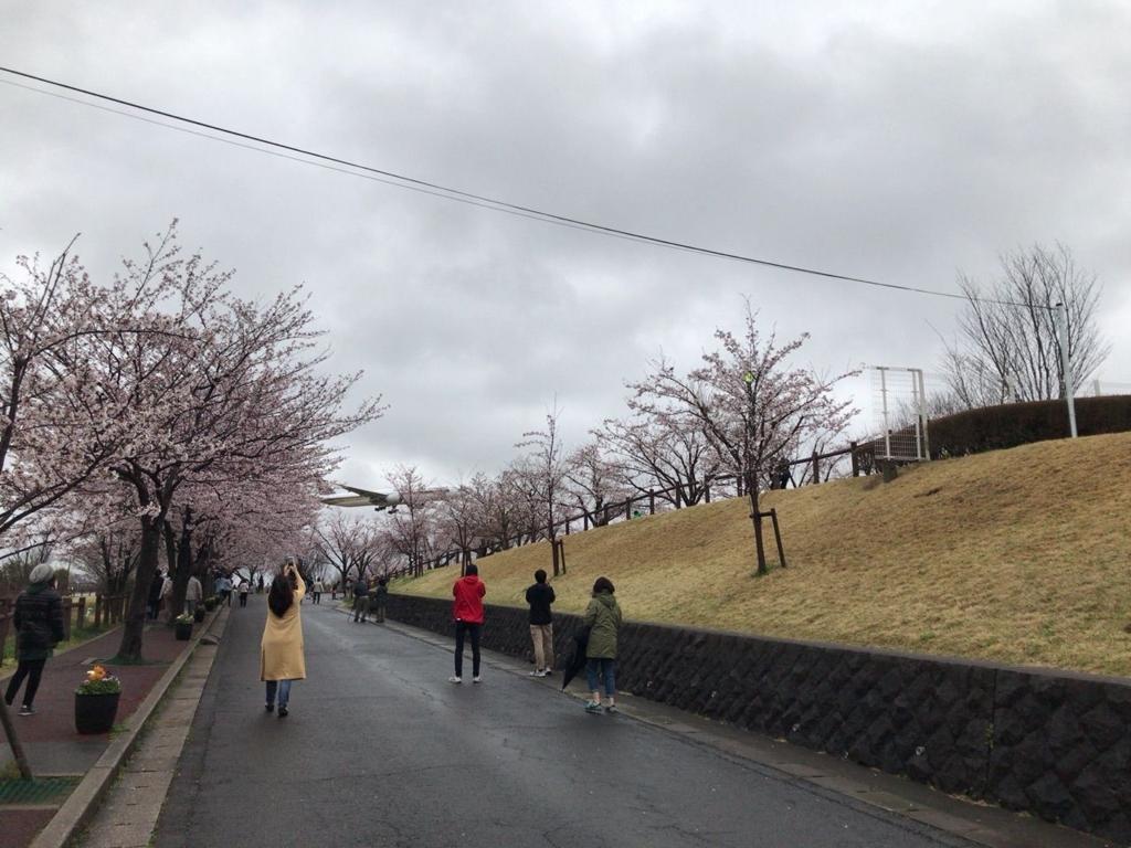 f:id:tomoko-air-tokyo:20180116085023j:plain