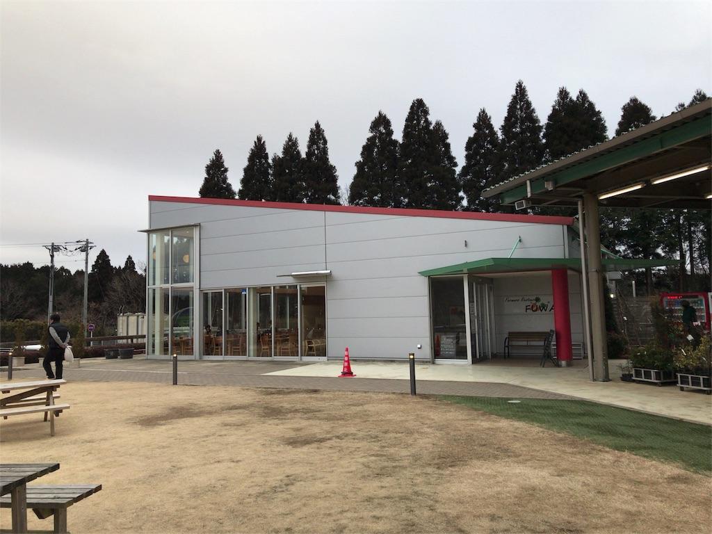 f:id:tomoko-air-tokyo:20180225181328j:image