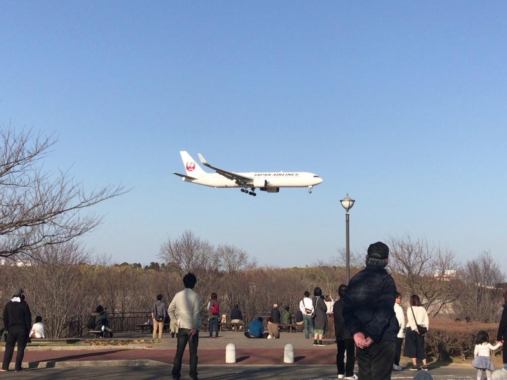 f:id:tomoko-air-tokyo:20180304190134j:plain