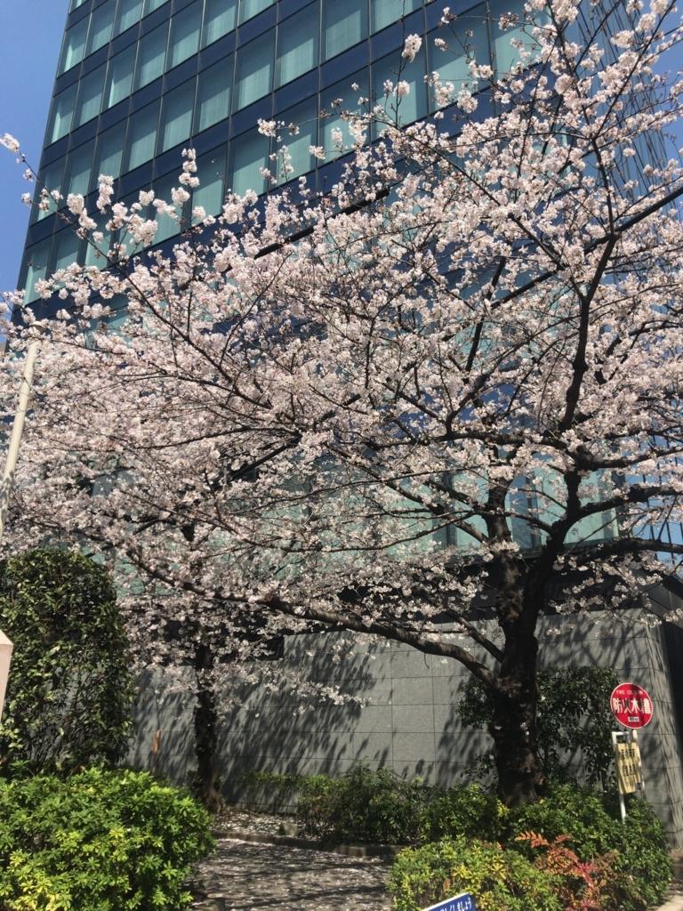 f:id:tomoko-air-tokyo:20180326093258j:plain