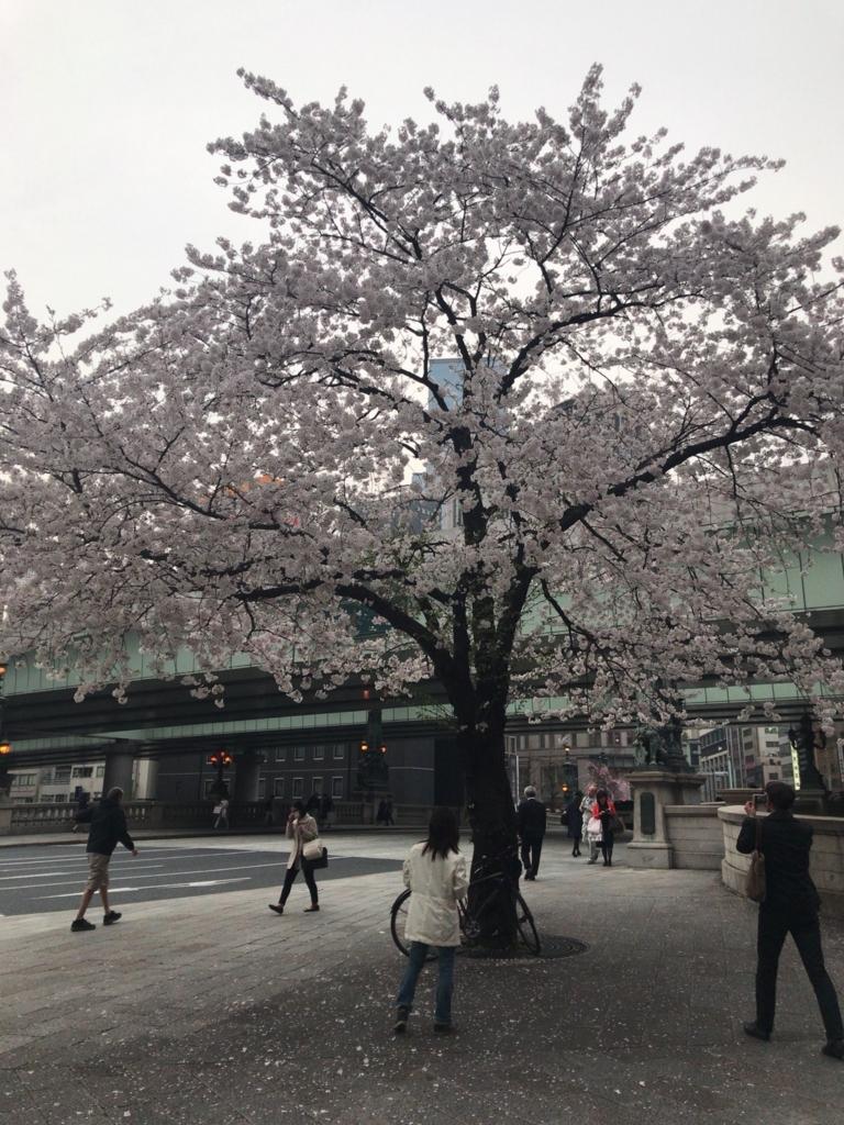 f:id:tomoko-air-tokyo:20180329085008j:plain
