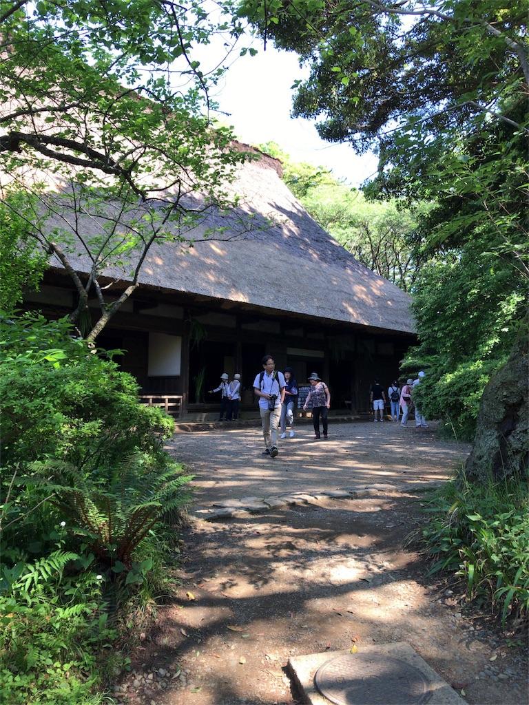 f:id:tomoko-air-tokyo:20180505153348j:image