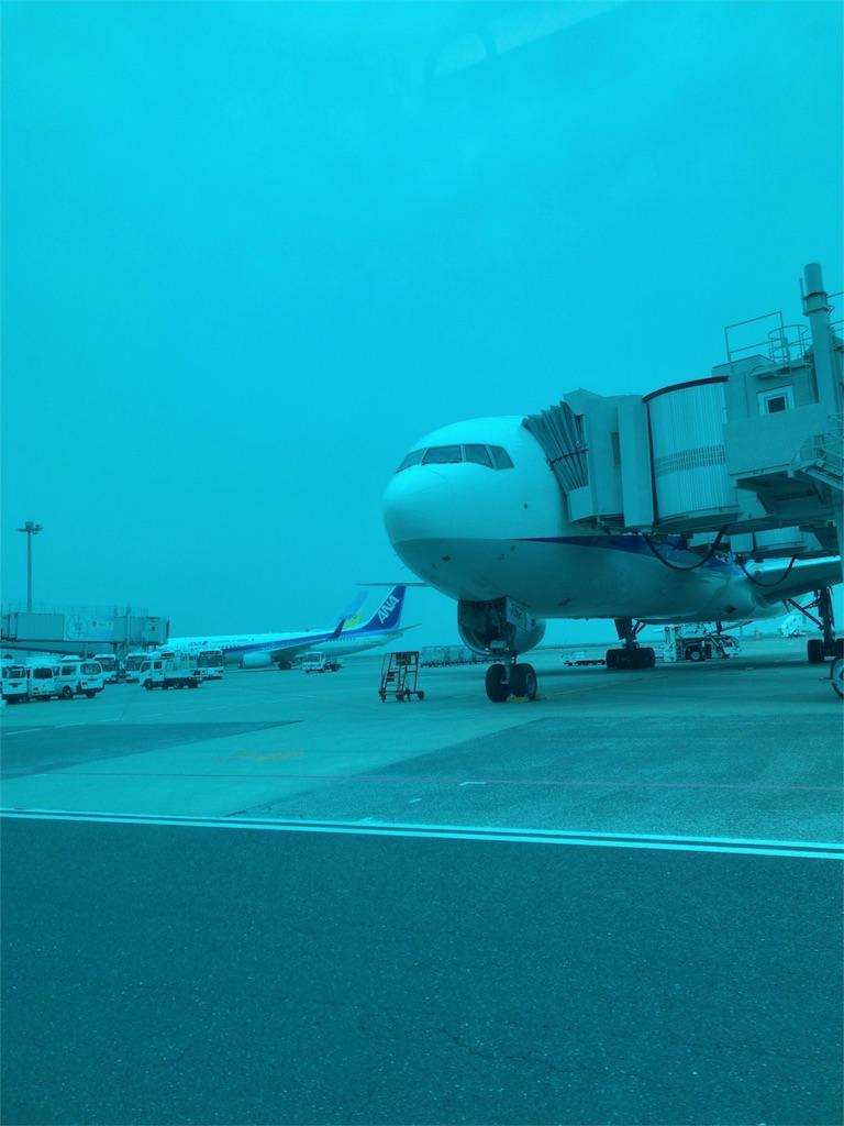 f:id:tomoko-air-tokyo:20180623065526j:image