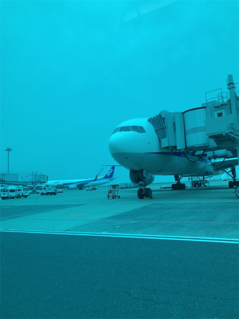 f:id:tomoko-air-tokyo:20180624210808j:image