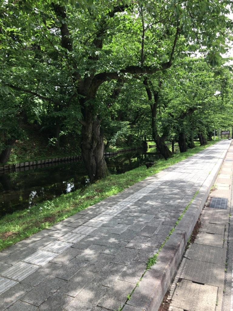 f:id:tomoko-air-tokyo:20180710131632j:plain