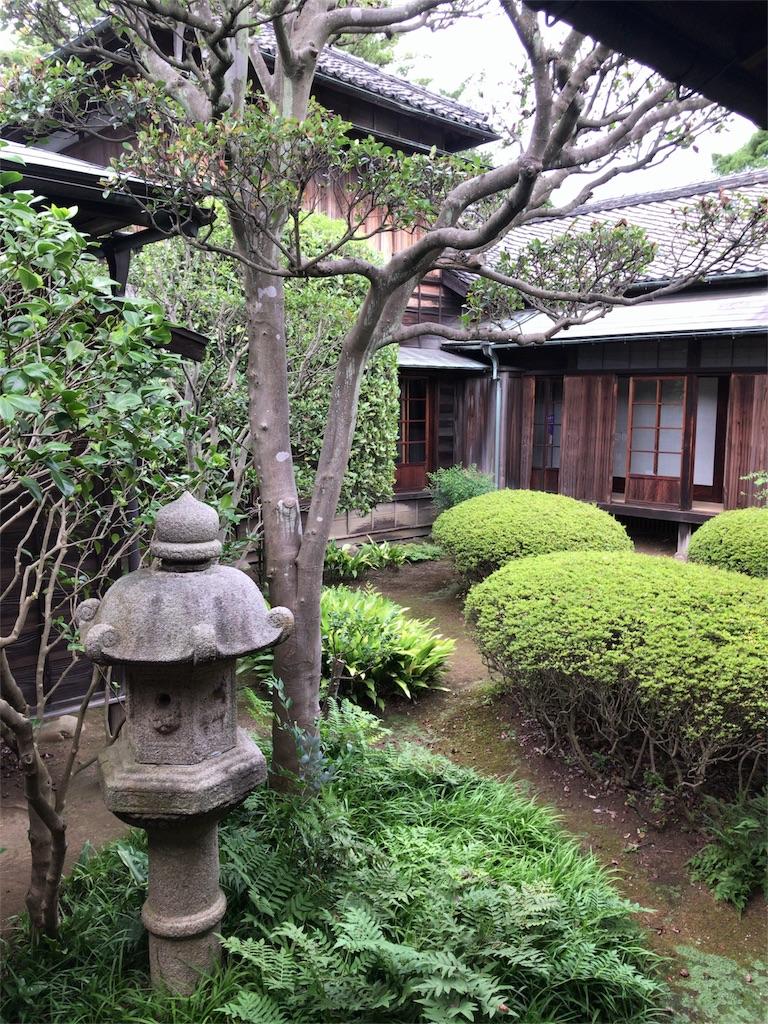 f:id:tomoko-air-tokyo:20180819202421j:image