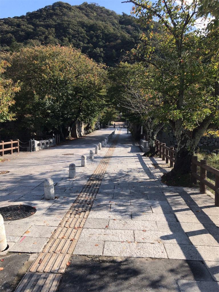 f:id:tomoko-air-tokyo:20181014134105j:image