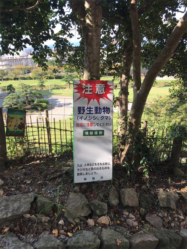f:id:tomoko-air-tokyo:20181014134206j:image