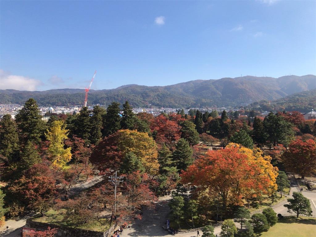 f:id:tomoko-air-tokyo:20181105102707j:image