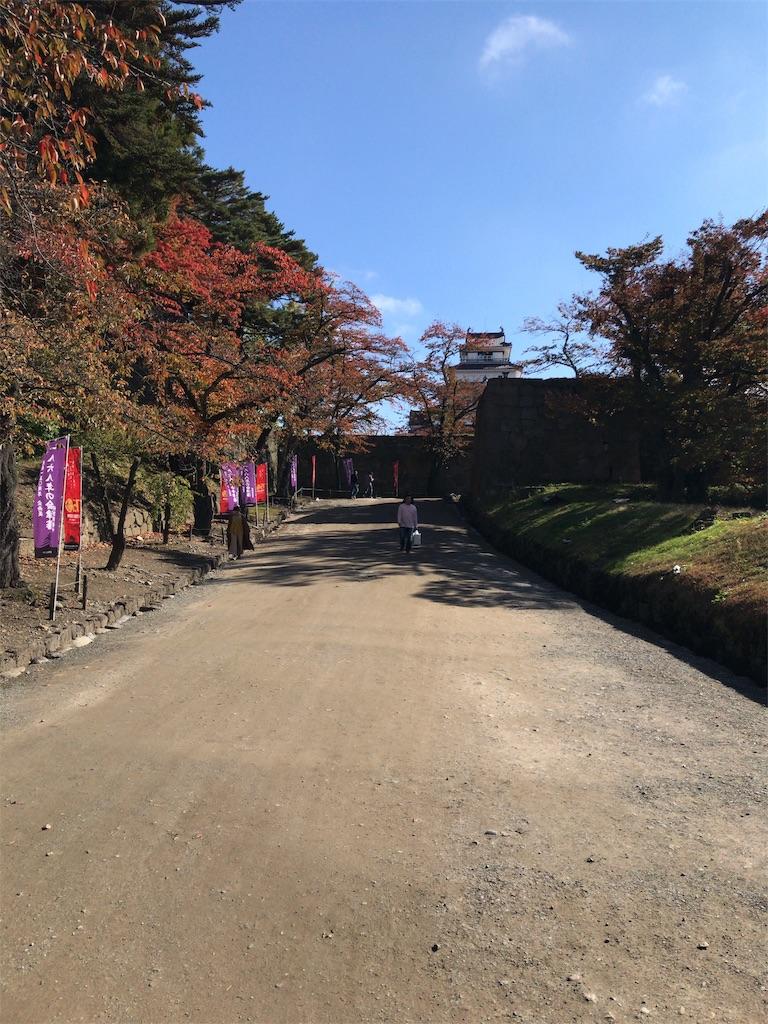 f:id:tomoko-air-tokyo:20181105102753j:image