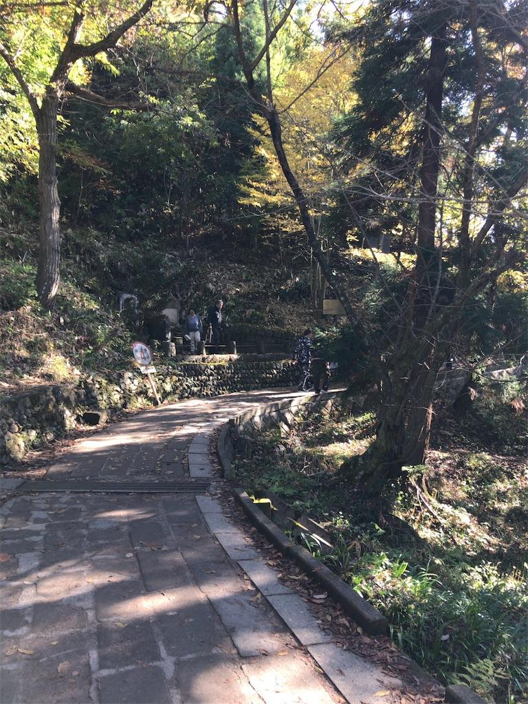 f:id:tomoko-air-tokyo:20181105103943j:image