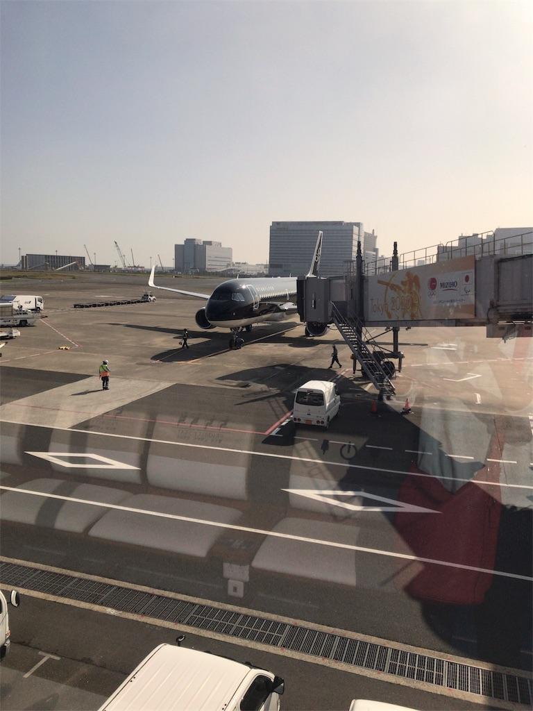 f:id:tomoko-air-tokyo:20181113111606j:image