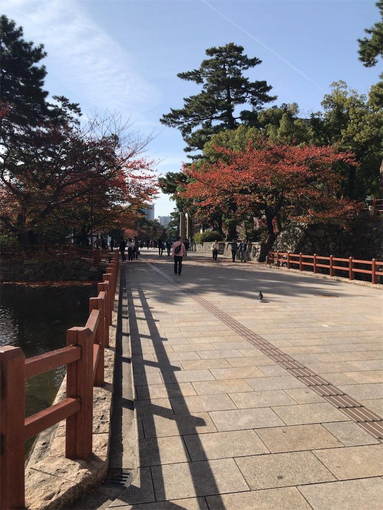 f:id:tomoko-air-tokyo:20181113114109j:image