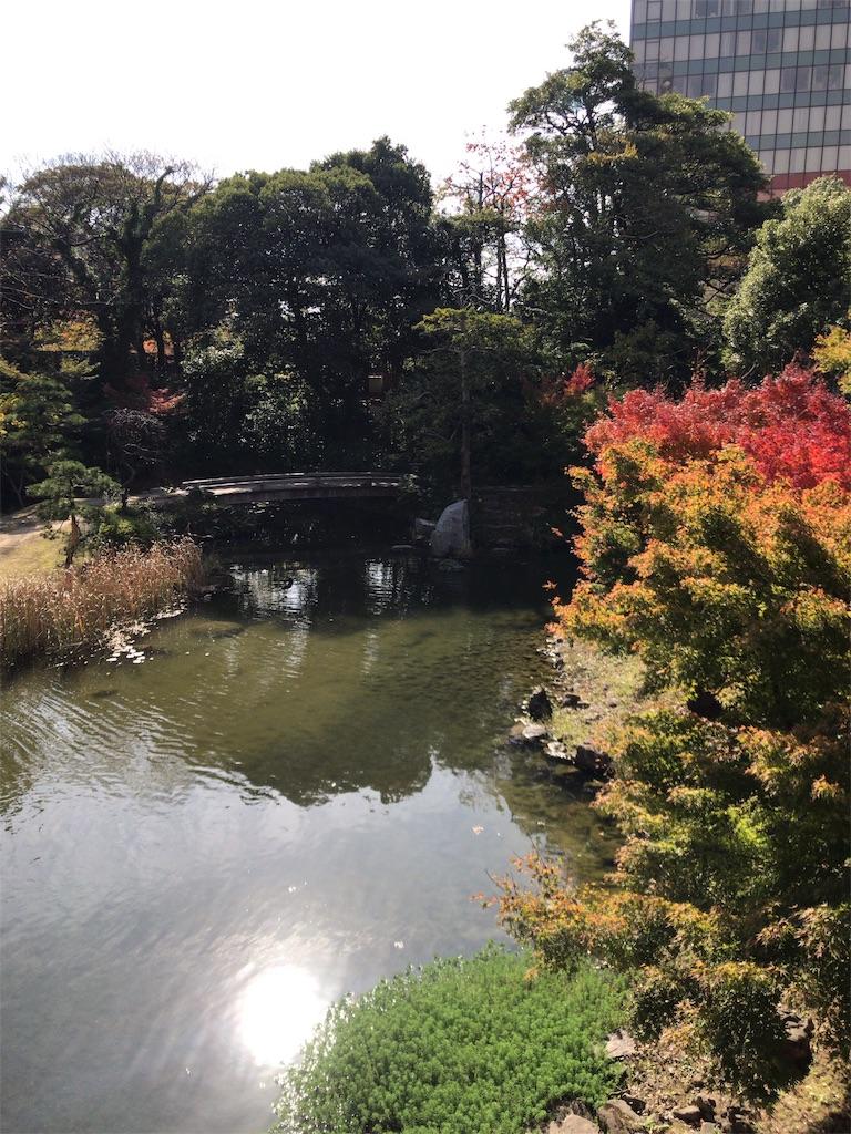 f:id:tomoko-air-tokyo:20181113114129j:image