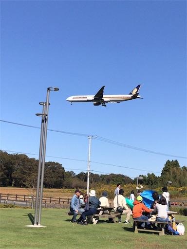 f:id:tomoko-air-tokyo:20190117104219j:plain