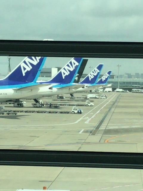 f:id:tomoko-air-tokyo:20190117112500j:plain