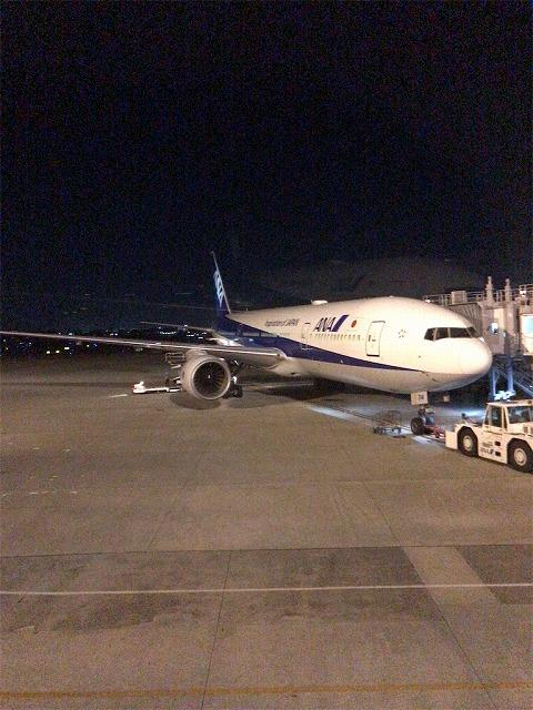 f:id:tomoko-air-tokyo:20190117113134j:plain
