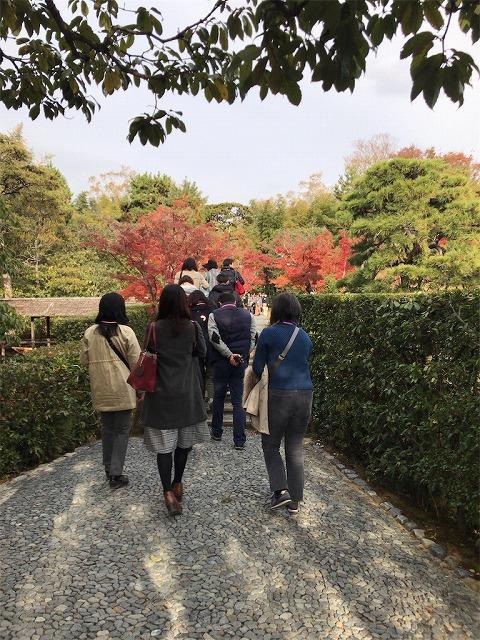 f:id:tomoko-air-tokyo:20190117134118j:plain