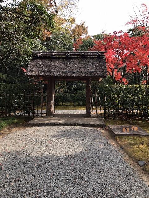 f:id:tomoko-air-tokyo:20190117134240j:plain