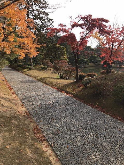 f:id:tomoko-air-tokyo:20190117134349j:plain