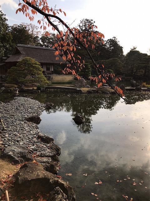 f:id:tomoko-air-tokyo:20190117135159j:plain