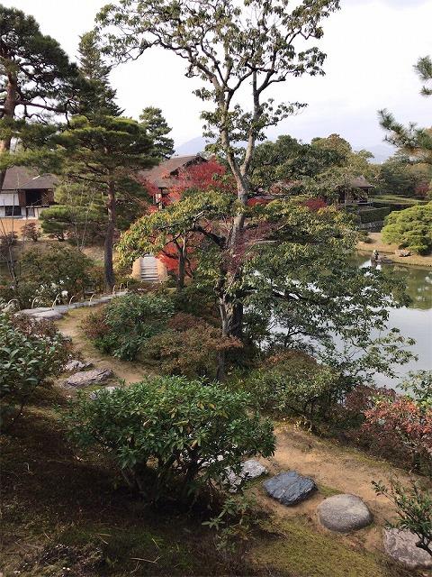 f:id:tomoko-air-tokyo:20190117135734j:plain