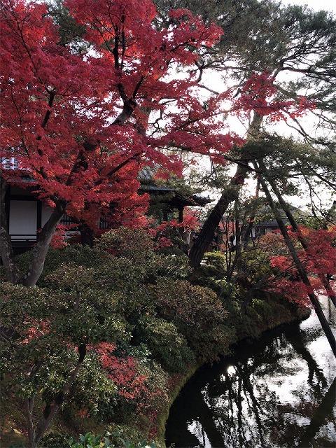 f:id:tomoko-air-tokyo:20190117135945j:plain