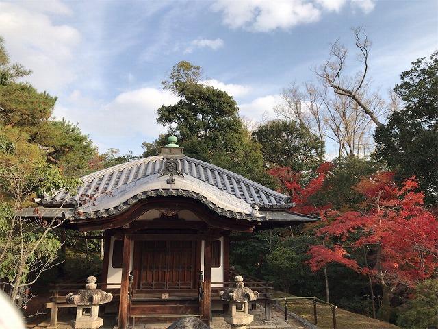 f:id:tomoko-air-tokyo:20190117140118j:plain