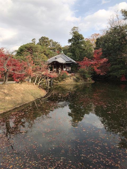 f:id:tomoko-air-tokyo:20190117140254j:plain