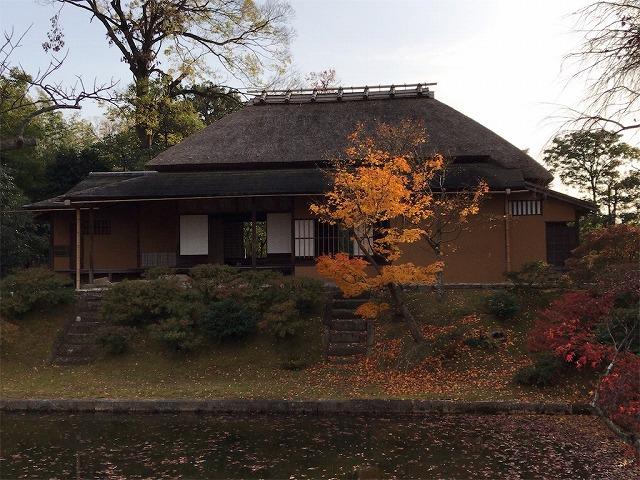 f:id:tomoko-air-tokyo:20190117140358j:plain