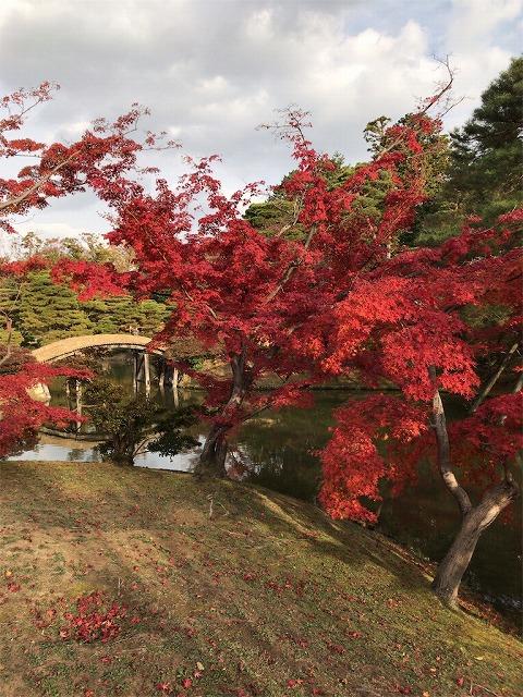 f:id:tomoko-air-tokyo:20190117140411j:plain