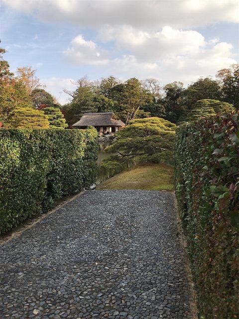 f:id:tomoko-air-tokyo:20190117140645j:plain