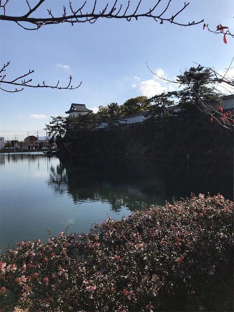 f:id:tomoko-air-tokyo:20190117143013j:plain