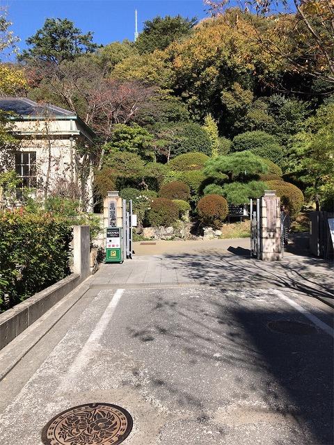 f:id:tomoko-air-tokyo:20190117143906j:plain