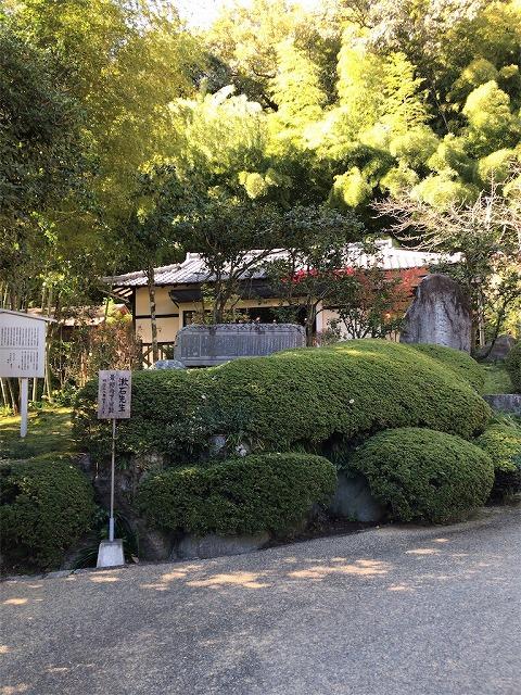 f:id:tomoko-air-tokyo:20190117144059j:plain