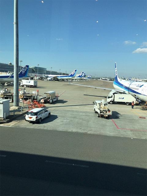 f:id:tomoko-air-tokyo:20190117152724j:plain