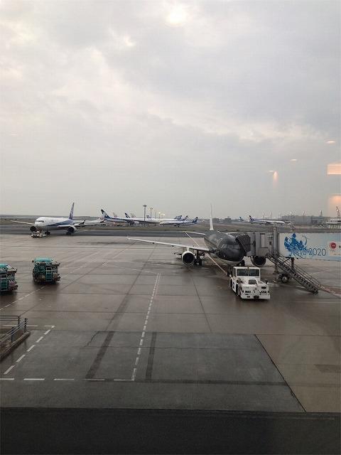 f:id:tomoko-air-tokyo:20190118092649j:plain