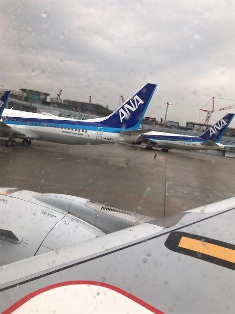 f:id:tomoko-air-tokyo:20190118092705j:plain