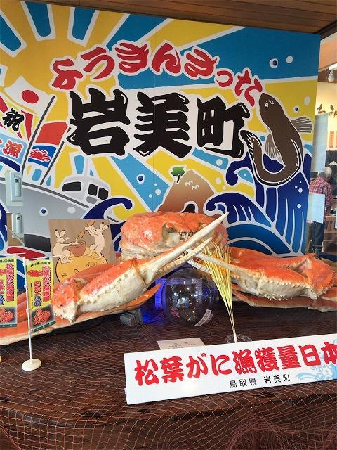 f:id:tomoko-air-tokyo:20190118132856j:plain