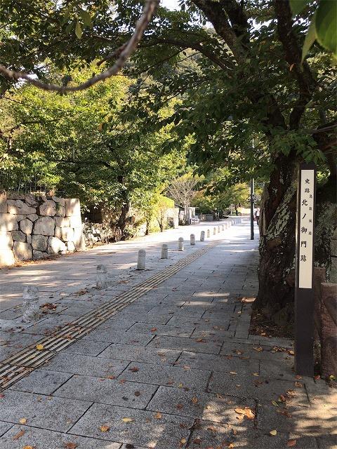 f:id:tomoko-air-tokyo:20190118133535j:plain