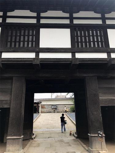 f:id:tomoko-air-tokyo:20190119152706j:plain