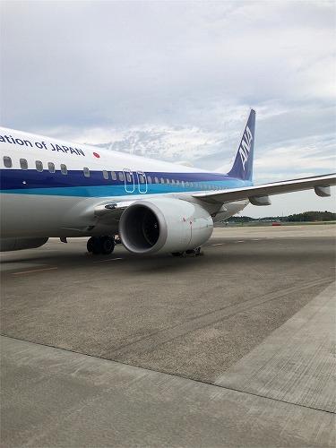 f:id:tomoko-air-tokyo:20190120115219j:plain