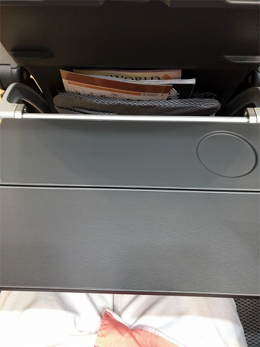 f:id:tomoko-air-tokyo:20190120121353j:plain