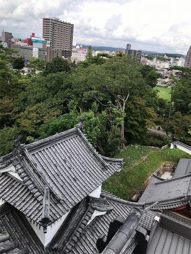 f:id:tomoko-air-tokyo:20190121140838j:plain