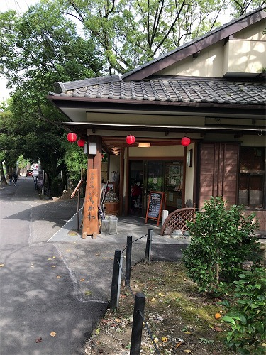 f:id:tomoko-air-tokyo:20190121140846j:plain