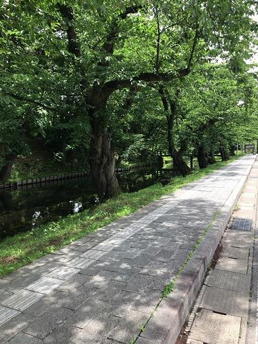 f:id:tomoko-air-tokyo:20190123085725j:plain