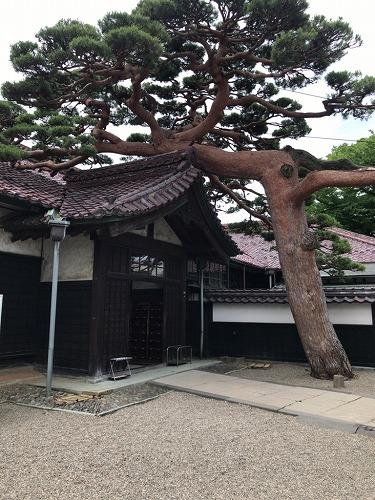 f:id:tomoko-air-tokyo:20190124092321j:plain