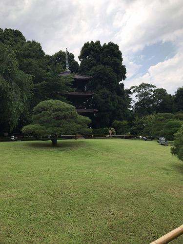 f:id:tomoko-air-tokyo:20190125111217j:plain