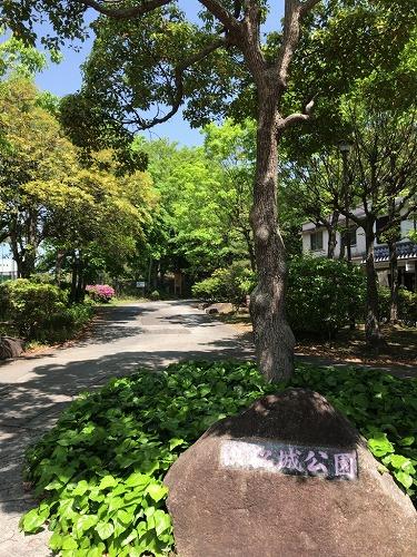 f:id:tomoko-air-tokyo:20190128095653j:plain