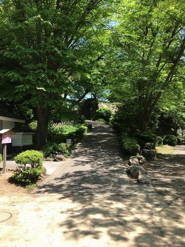 f:id:tomoko-air-tokyo:20190128095656j:plain